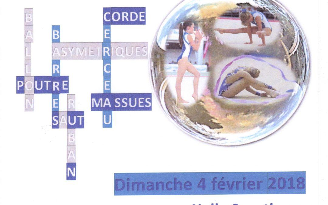 Isère gym cup à Vienne Dimanche 4 Février * convocation
